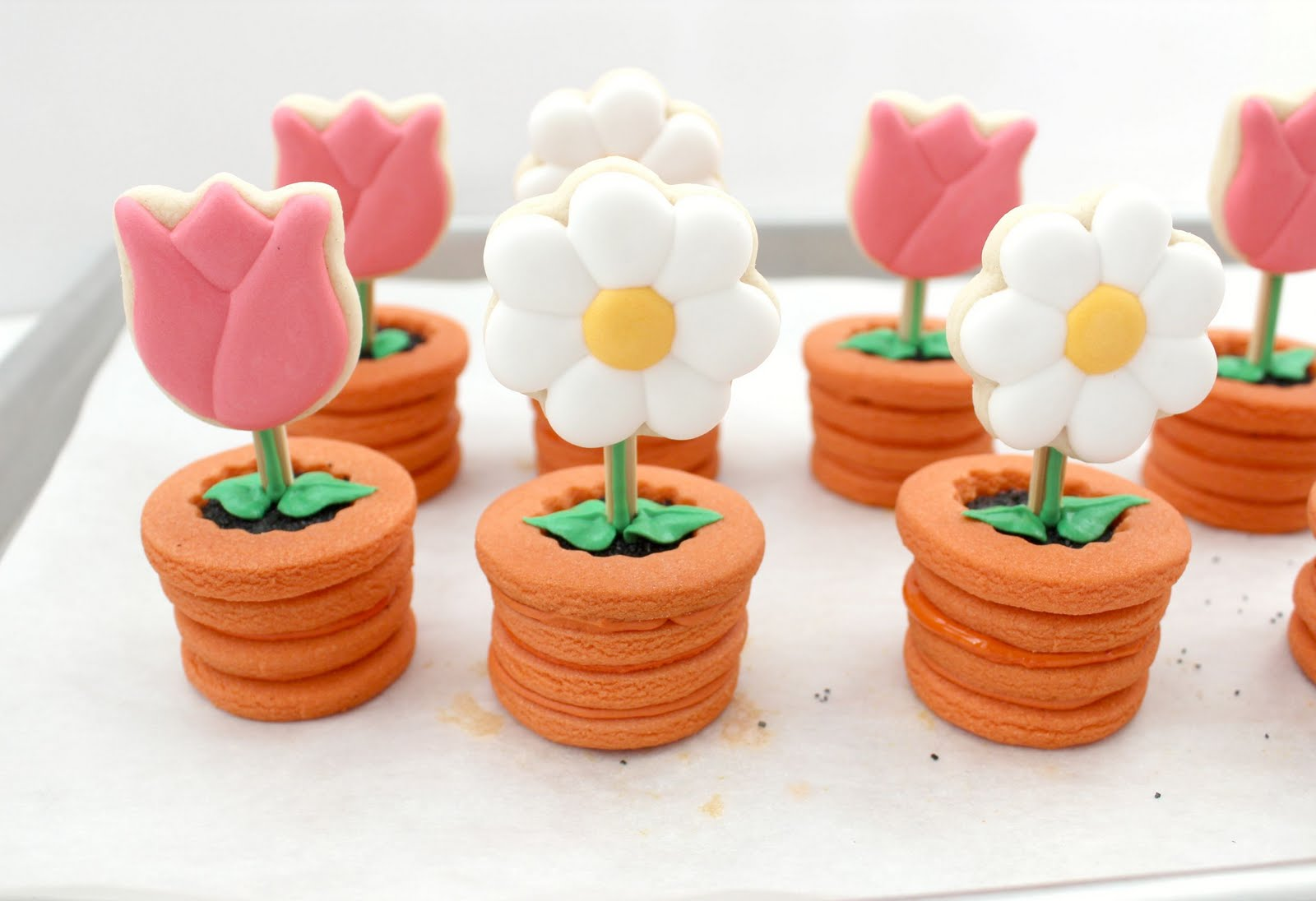 Flowers in pots cookies the sweet adventures of sugar belle i made daisies nvjuhfo Choice Image